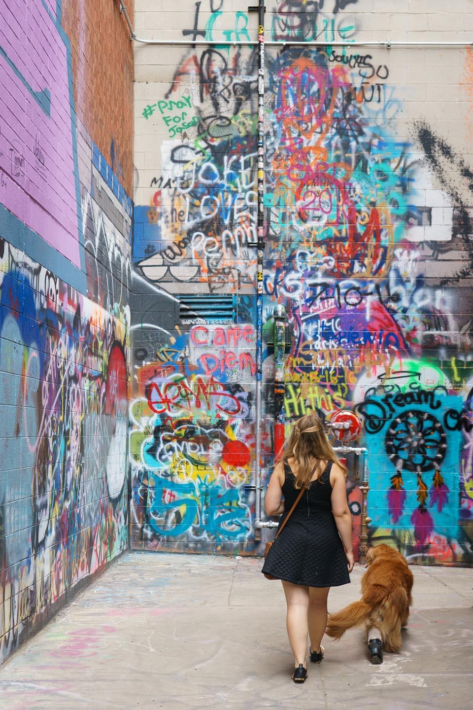 Graffiti wall ann arbor - Graffiti Alley Urban Dog Photography